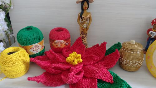 flor-de-natal.jpg